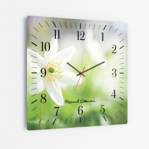Wood Anemone - Square Glass Clock